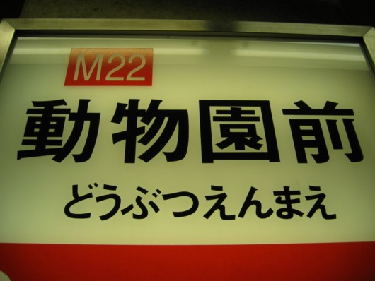 天王寺動物園:電車(地下鉄)の行き方!